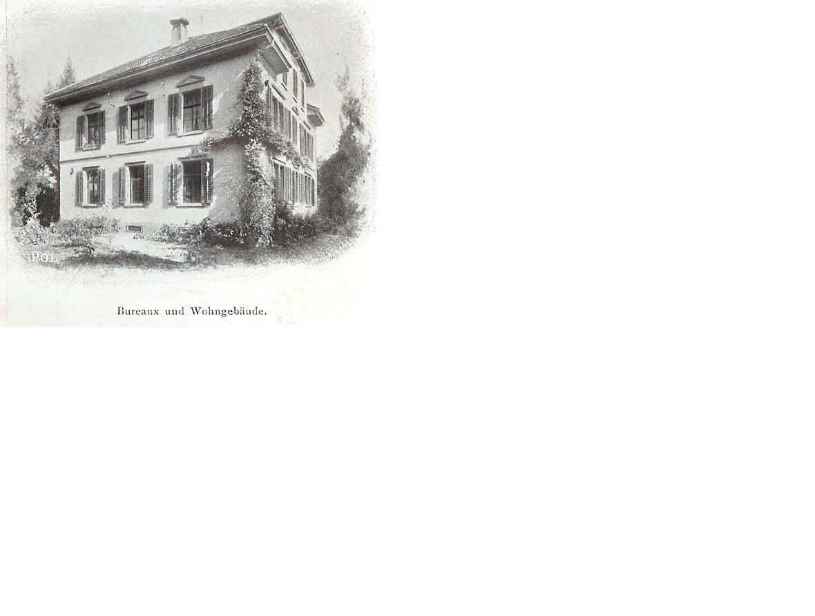 vigogne6.jpg